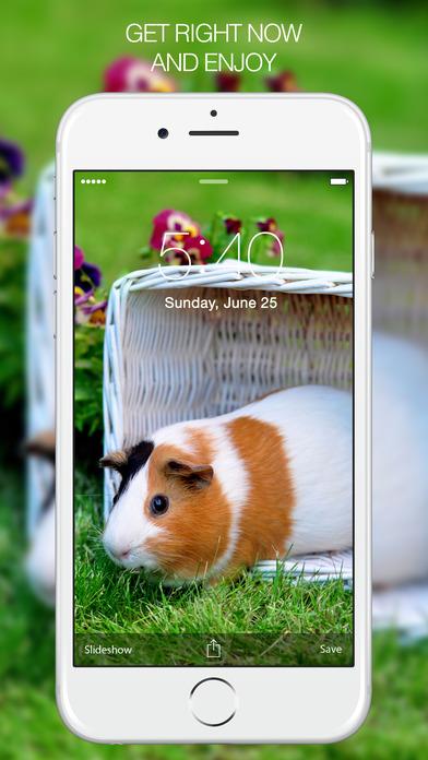 Pet Wallpapers iPhone Screenshot 5