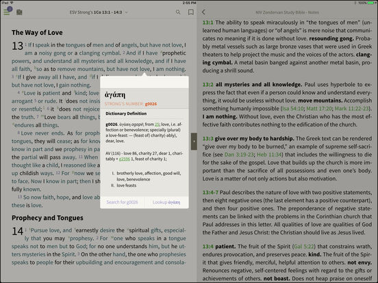 NLT Study Bible for BibleReader iPad Screenshot 3