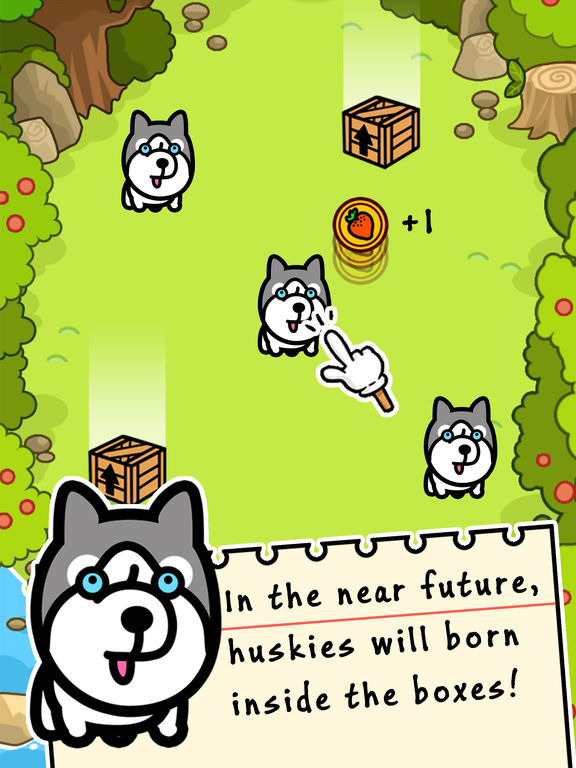Husky Evolution - Tap Coins of the Crazy Mutant Simulator Idle Game-ipad-0