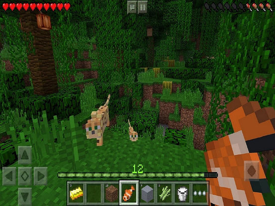 Minecraft: Pocket Edition Screenshots