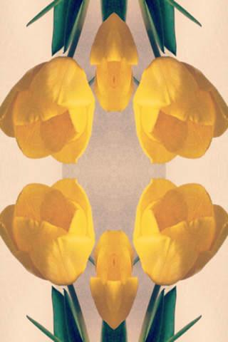 Symmetry - symmetry image maker - ( Enjoy with Camera / Photo Album ) screenshot 2