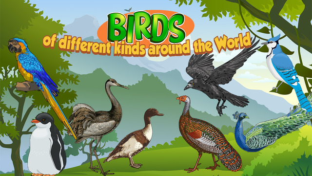 Birds of different kinds around the World