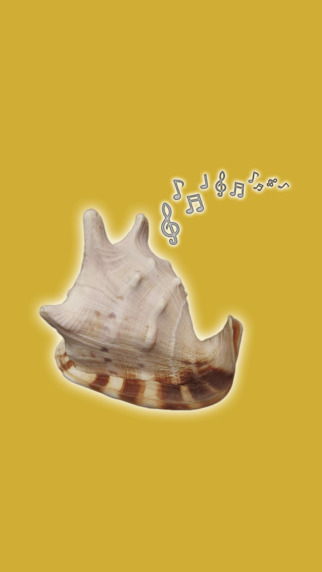 Pocket SeaShell