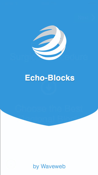 Echo Blocks