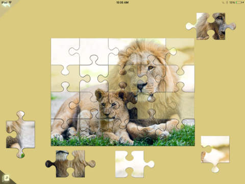 Kitty Cat Jigsaw Puzzles Book