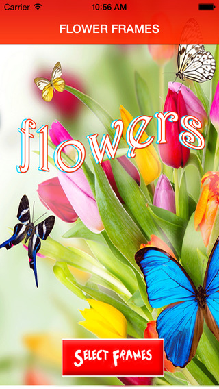 Flowers Frames Free