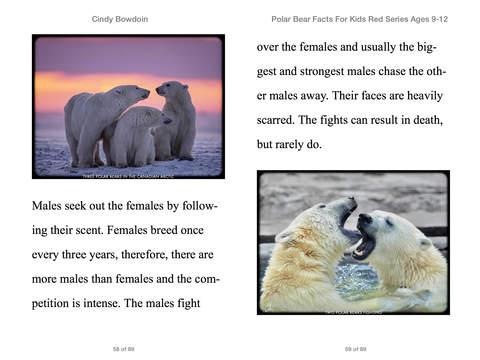 Polar Bear Facts For Kids 9-12 by Cindy Bowdoin on iBooks