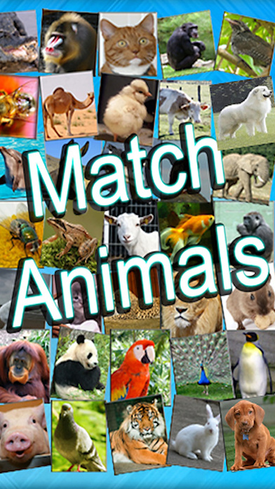Kids can Match Animals lite iPhone Screenshot 1