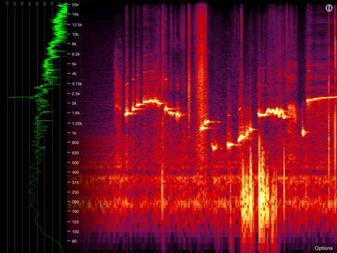 Spectrogram Pro iPad Screenshot 1