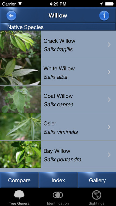 TreeId - The British Tree Identification Guide iPhone Screenshot 2