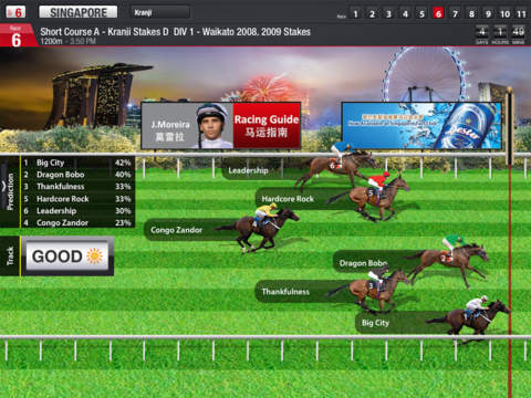 Racing Guide Fast Form Predictor for iPad