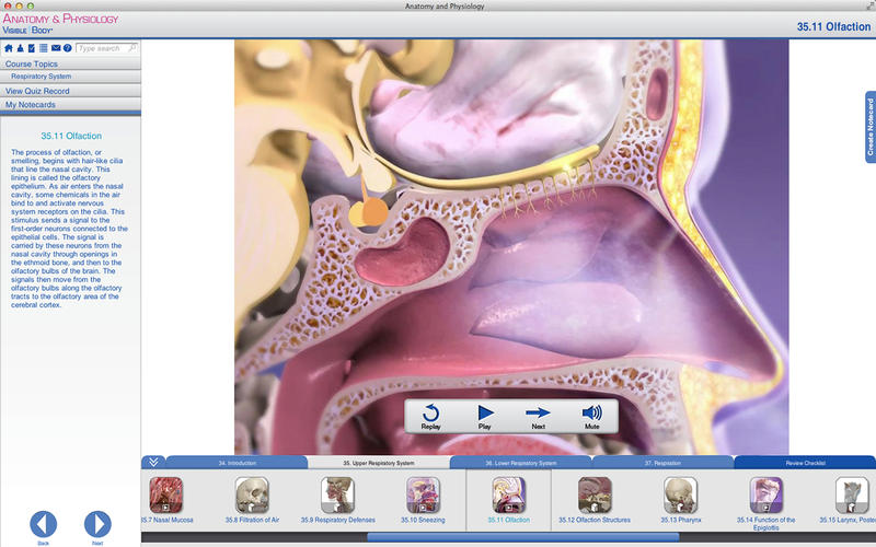 Anatomy and Physiology Screenshot - 3