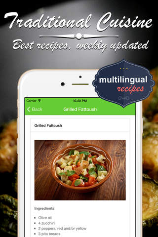 Lebanese Food Cookbook. Quick and Easy Cooking Best recipes & dishes. screenshot 2