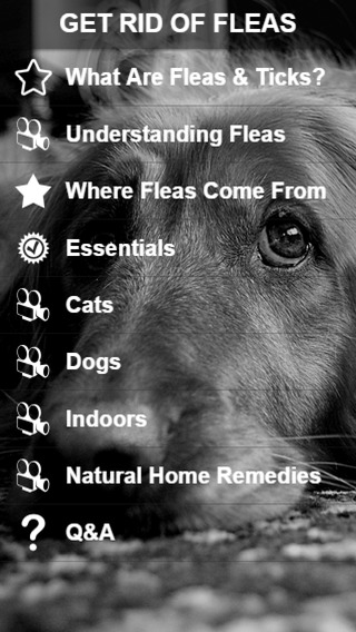 【免費生活App】How To Get Rid Of Fleas-APP點子