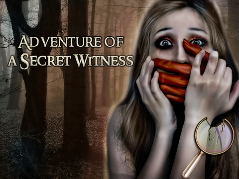 Adventures of Secret Witness HD