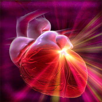Human Body : Cardiovascular System Trivia LOGO-APP點子