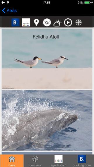 Guía de viajes de Maldivas Tristansoft