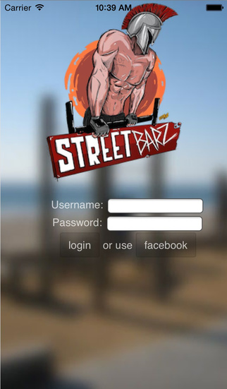 StreetBarz Street Workout