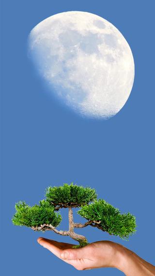 Moon Calendar the Daily Lunar Almanac