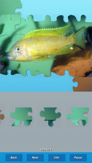 Fish Puzzles