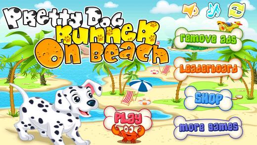 Pretty Dog Runner On Beach - Wonderful Running Game