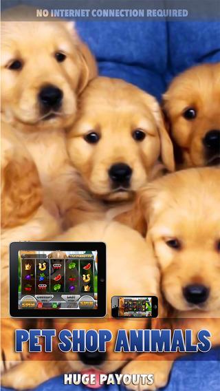 Pet Shop Animals Slots Machine - FREE Amazing Las Vegas Casino Games Premium Edition