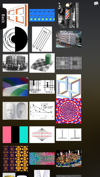 Optical Illusions Guide