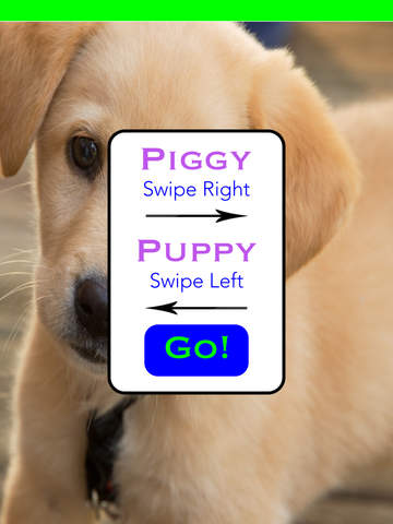 Pig Or Pup For iPad