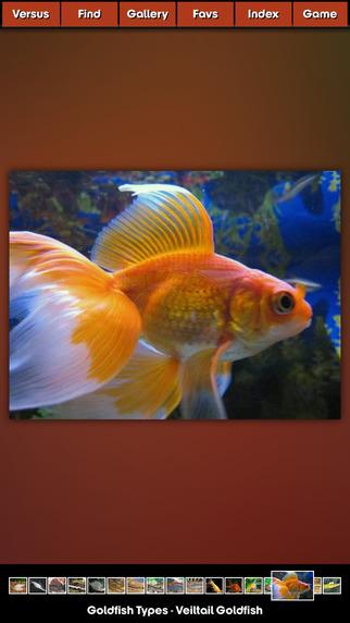 Fish Encyclopedia Pro HD