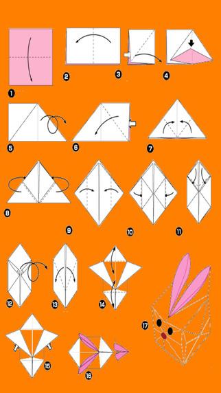 教你玩折纸: 小动物折纸乐园