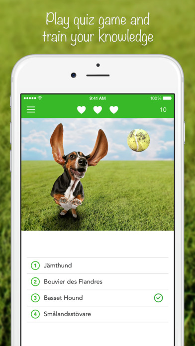 iKnow Dogs HD+ Dog Breed Guide and Quiz Game iPhone Screenshot 4