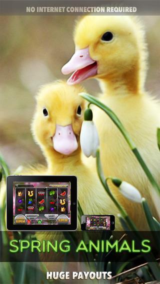 Spring Animals Slots - FREE Slot Game Big Jackpot Joy of Winning