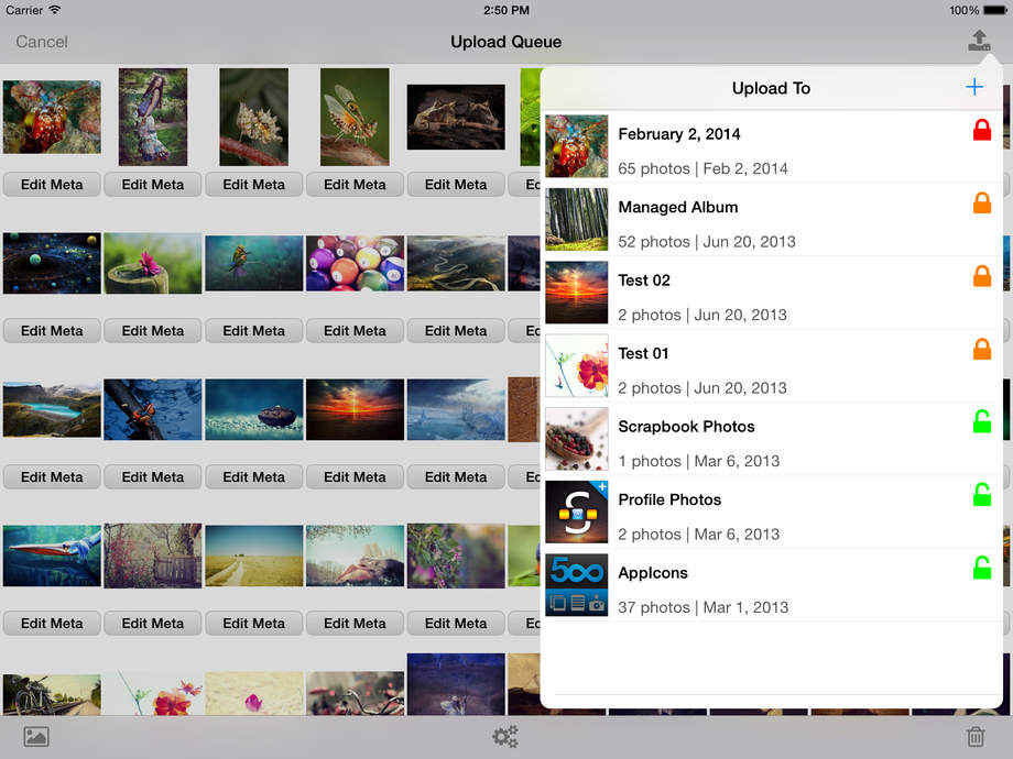 iExplorer for Picasa - iPhone Mobile Analytics and App Store Data