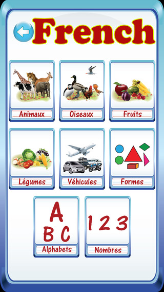 Preschooler Kids French ABC Alphabets Numbers Flash Cards