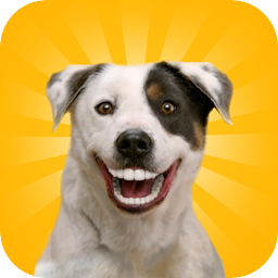Denture Your Dog - iOS Store App Ranking and App Store Stats