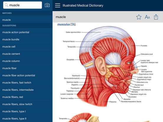 Dorland's Illustrated Medical Dictionary, Elsevier Screenshots