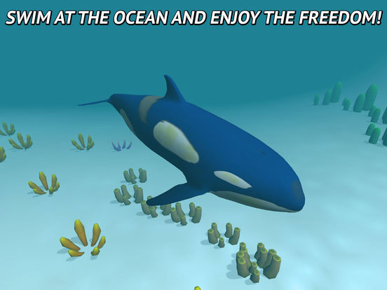 Angry Killer Whale: Orca Simulator 3D Full Screenshots