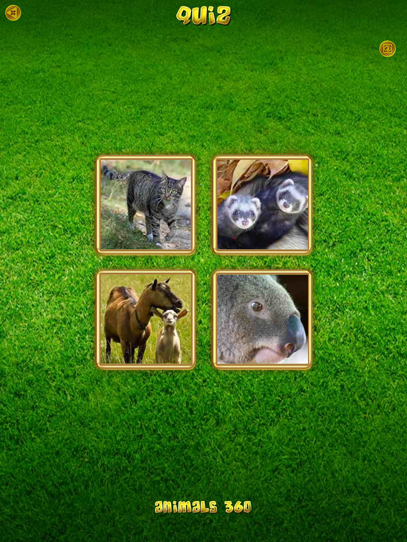 Screenshots for Animals 360
