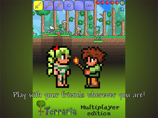 Multiplayer Terraria edition Screenshots