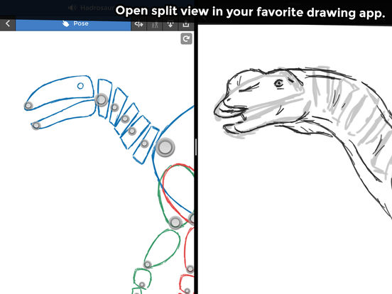 Pose & Draw Dinosaurs Screenshots