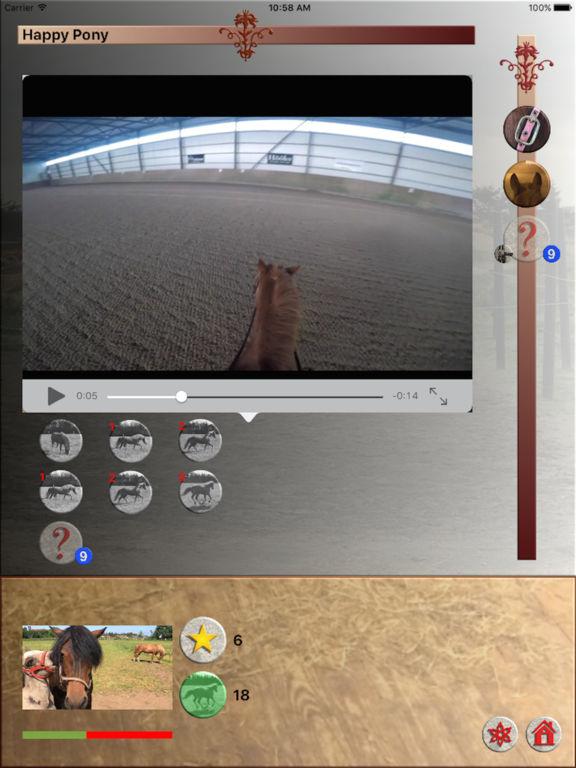 Happy Pony by Horse Reader screenshot 5