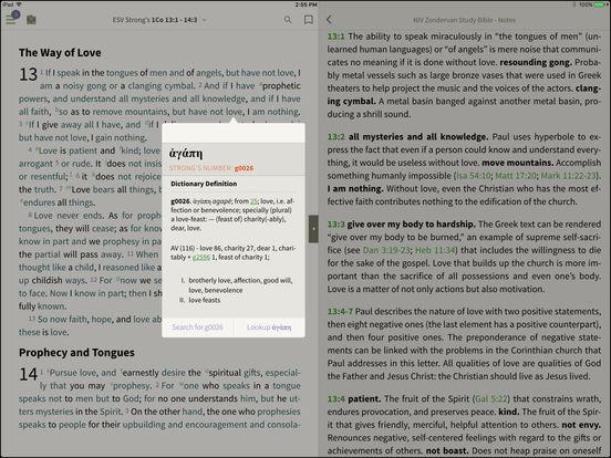 NIV Bible BibleReader iPad Screenshot 2