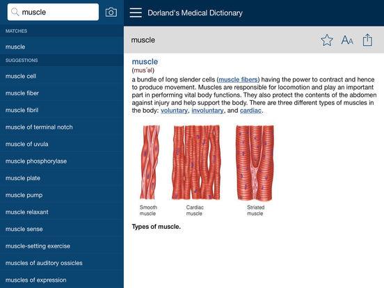 Dorland's Medical Dictionary iPad Screenshot 2