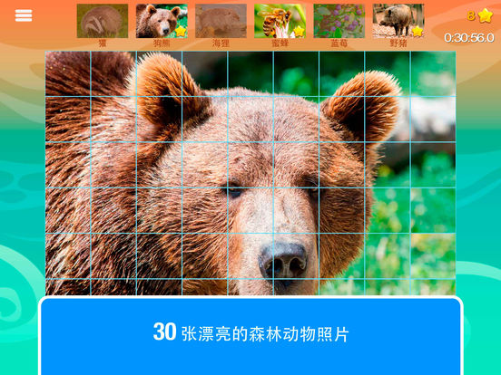 智能方块: 森林, 的森林动物
