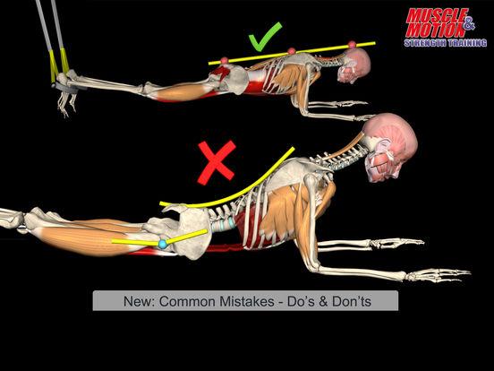 Muscle And Motion скачать торрент - фото 7