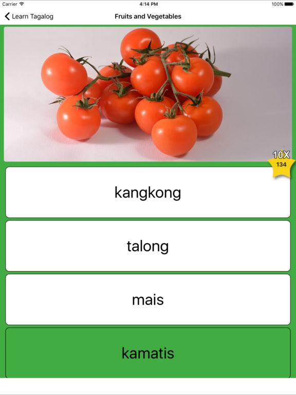 Learn Tagalog screenshot 9