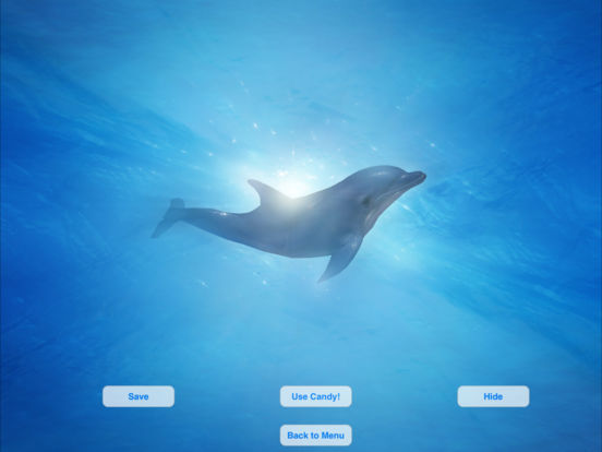 Lovely Dolphins Slideshow & Wallpapers iPad Screenshot 3