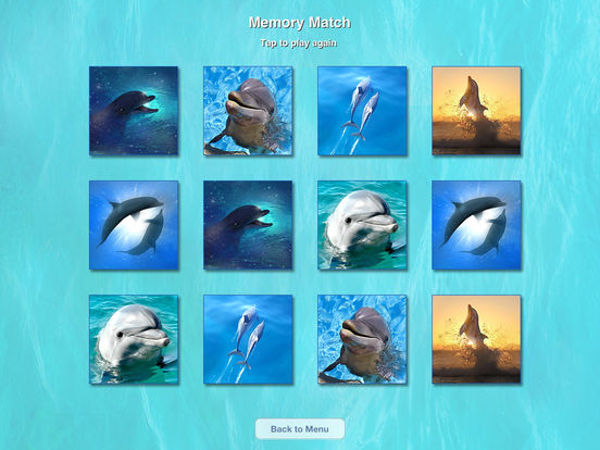 Lovely Dolphins Slideshow & Wallpapers iPad Screenshot 1