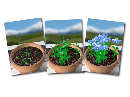 Flower Garden Free - Grow Flowers and Send Bouquets iPad Screenshot 1