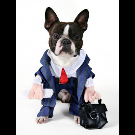 Business Man Dog Snow Globe